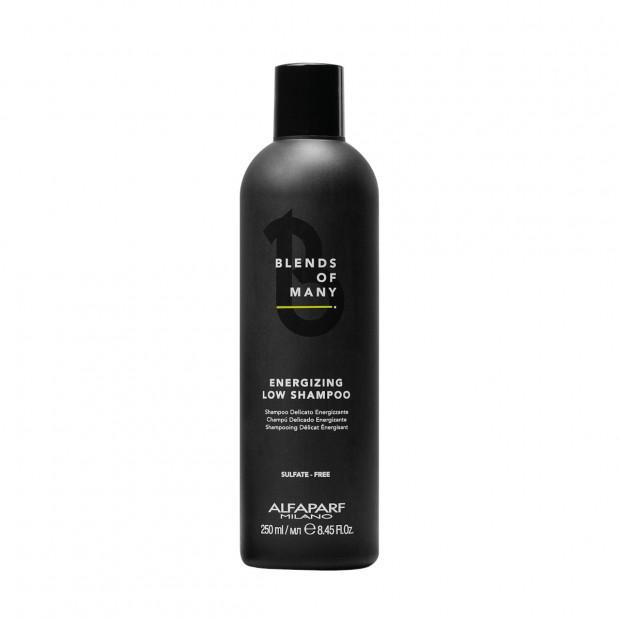 Шампоан против косопад за мъже Alfaparf Energizing Low Shampoo 250 мл
