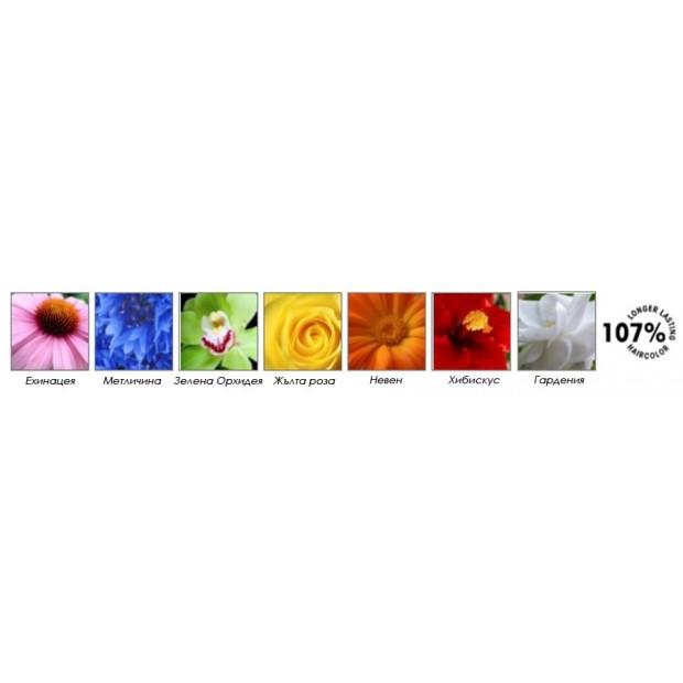 LANZA VIBES – Пигменти за директно боядисване на косата 90 мл