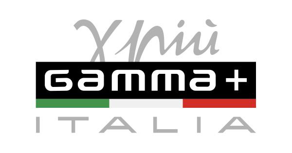 GammaPiu - страница 2 logo